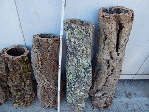 SAHAWA® Korkröhre ca. 60 - 80 cm ,Korkrinde, Korkeiche, Terrarium