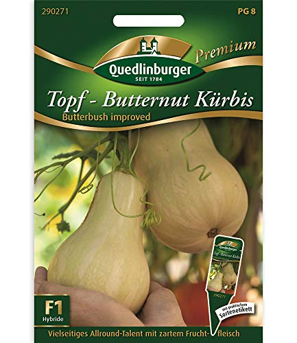 Kürbis Topf- Butternut,1 Portion