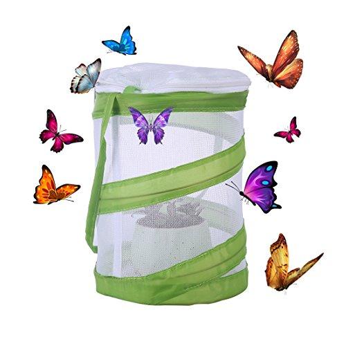 GANADA Schmetterlinge Züchten Schmetterlingsgarten für Kitas