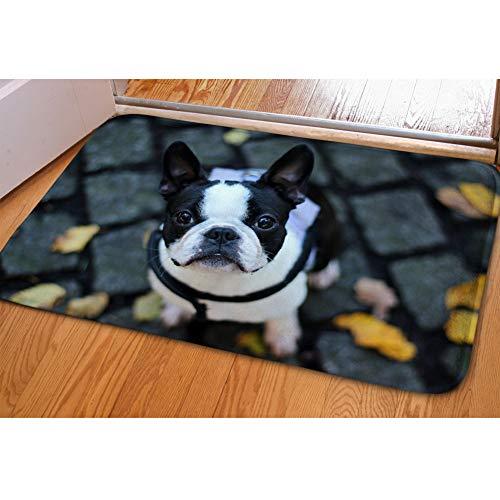 Nopersonality - Felpudos absorbentes lavables para puerta, diseño divertido de perro, Franela, Boston Terrier, Medium