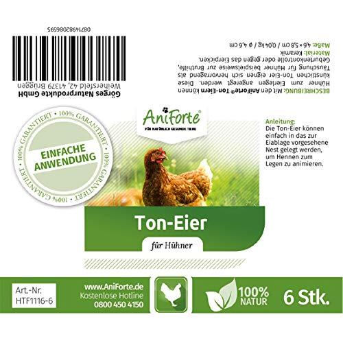 AniForte künstliche Hühnereier - 4