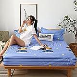 CYYyang colchón Acolchado, antialérgico antiácaros, Sábana Impermeable de un Solo Producto hotel-12_200cm × 220cm