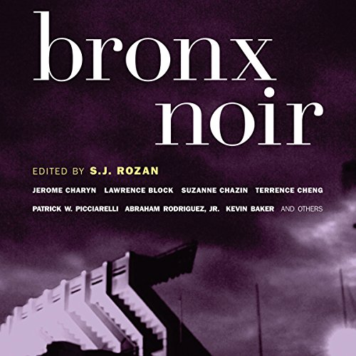 Bronx Noir audiobook cover art