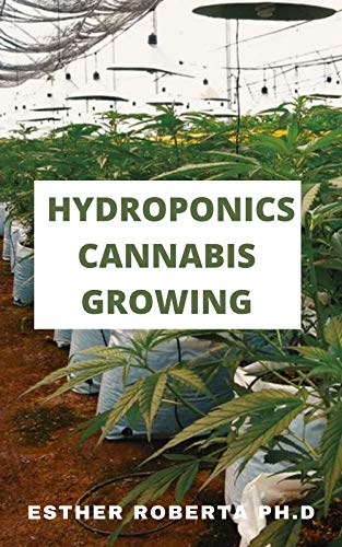 HYDROPONICS CANNABIS GROWING: THIS COMPLETE GUIDE IS ALL ABOUT HOW CANNABIS CAN BE GROW INDOOR ALL THE PROCESSING TO…