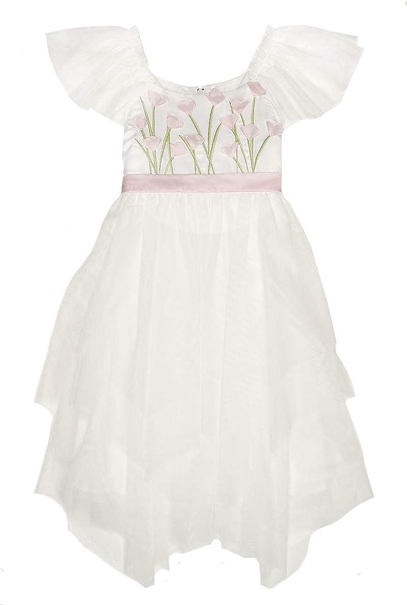 Biscotti 106 Ivory Spring Gardens Embroidered Bodice Dress