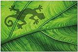 Wallario XXL Poster - Gecko Schatten auf grünem Blatt -