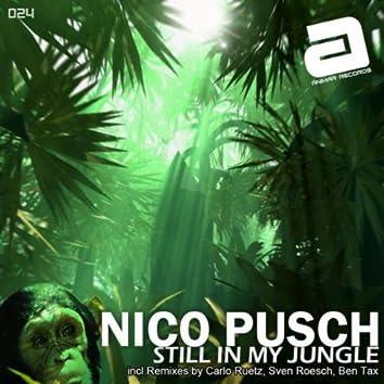 Still in my Jungle