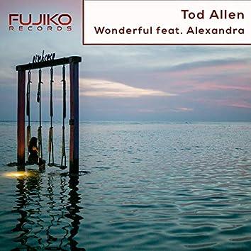 Wonderful (Extended Mix)