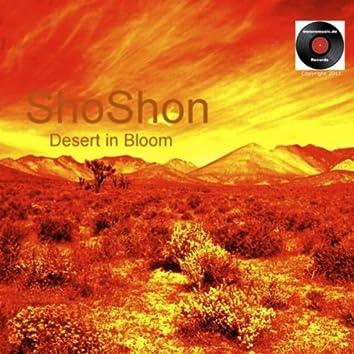 Desert in Blom