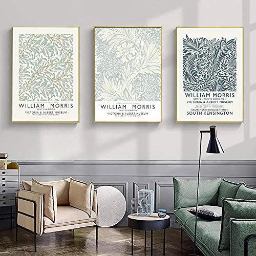SNGTOW Impresión de Cartel nórdico Planta Abstracta Lienzo Pintura caléndula Larkspur Pared imágenes artísticas para la decoración del hogar de la Sala de Estar   40x60cmx3 sin Marco
