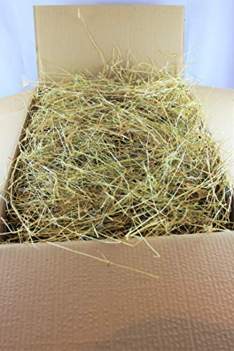 Hay - Bedding/Feed - Meadow Hay ideal for Rabbit, Guinea Pig etc. - 8kgs