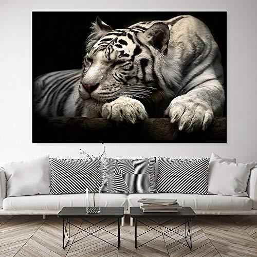 Animal moderno tigre blanco imagen arte de la pared impresiones en lienzo impresión hogar para la decoración de la sala de estar sin marco 40x50cm