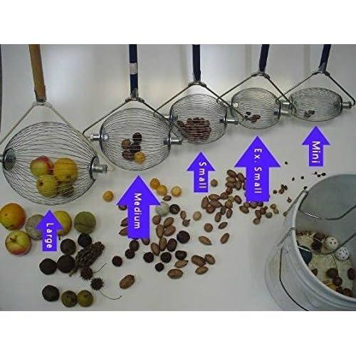 Amazon com : Large Nut Wizard- Nut Picker Upper for Black