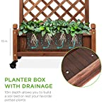 Best choice products 60in wood planter box & diamond lattice trellis, mobile outdoor raised garden bed for climbing… 9 diamond lattice: a 60-inch trellis is woven in a tight, diamond pattern to provide structural support and plenty of space for climbing plants planter box: fill the 10-inch deep box with your favorite potted plants and a water-resistant liner (not included) or a fresh soil bed thanks to built-in drainage holes optional wheels: a set of 4 included wheels can easily attach for added mobility and come with two locks for stability