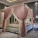 Mosquitero Adulto recorrido del hogar al aire libre plegable Mosquitera cama, doble capa de gasa palacio de la princesa del viento Mosquitera Inicio cifrado engrosamiento-B-stainless_steel_1.8 * 2.2m