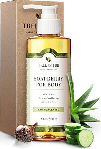 Ultra Gentle Sensitive Skin Body Wash by Tree To Tub - pH 5.5 Balanced Fragrance Free Body Wash. Eczema Body Wash for Women and Men, with Wild Soapberries Organic Aloe Vera 8.5 oz