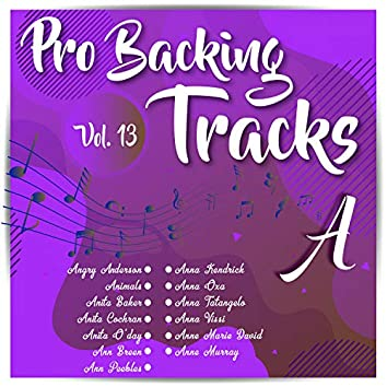 Pro Backing Tracks A, Vol.13