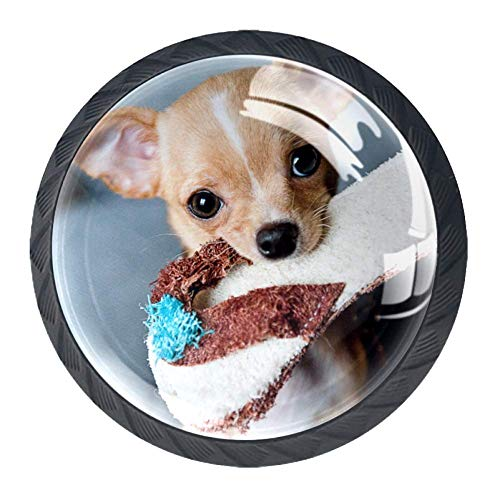 Hundeschuhe Schranktürknöpfe Runde Kristallglasknöpfe für die Raumdekoration (4 Stück) 3.5×2.8CM