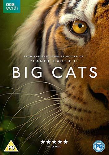 Big Cats [UK Import]
