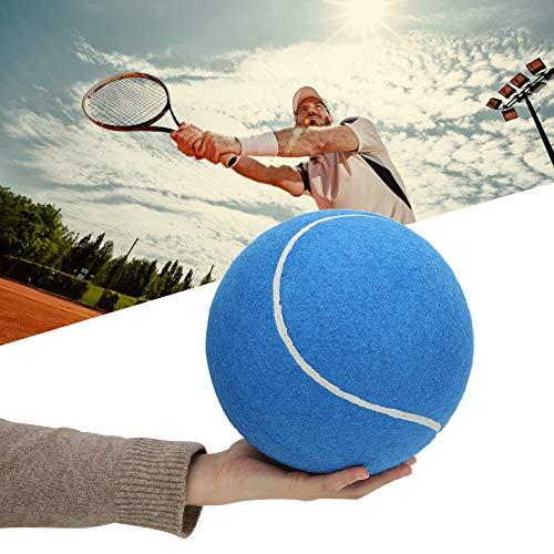 Dibiao 8In Große Aufblasbare Ungiftige Gummi Tennisball Signatur Tragbare Haustier Spielzeug Verschleißfest mit Netz zum Spielen (Blau)