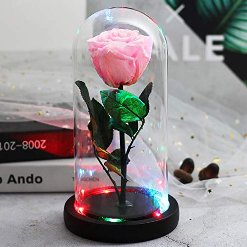 Bella y la bestia rosa roja en frasco cúpula de cristal intermitente LED colorido decoración de mesa para el hogar flores eternas