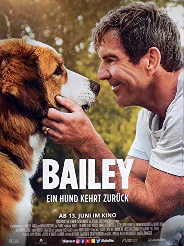 Bailey - Ein Hund kehrt zurück - Dennis Quaid - Filmposter A1 84x60cm gerollt