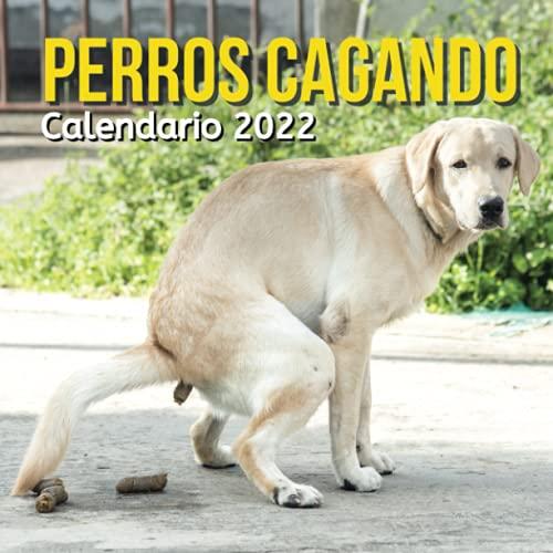 Perros Cagando Calendario 2022: Regalos Gracioso Para Amantes de los Perros   Divertidos Para Amigos, Mujer, Hombre, Companeros De Trabajo, ... Cumpleaños, Navidad   Regalo de Broma