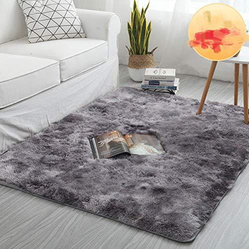 YFKSLAY - Alfombra de salón, mesa baja, casa estudiante, alfombra de suelo extragrande, A4, 60 cm * 160 cm (long poil)