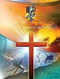 Panorama del Nuevo Testamento,