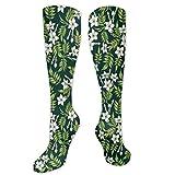 Calcetines acogedores, diseño romántico de flores despertar brotes en la naturaleza, calcetines divertidos para mujer, calcetines de algodón para mujer