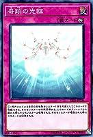 遊戯王/奇跡の光臨(ノーマル)/ストラクチャーデッキR 神光の波動