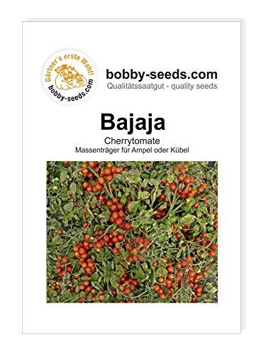 Bajaja Tomatensamen von Bobby-Seeds Portion