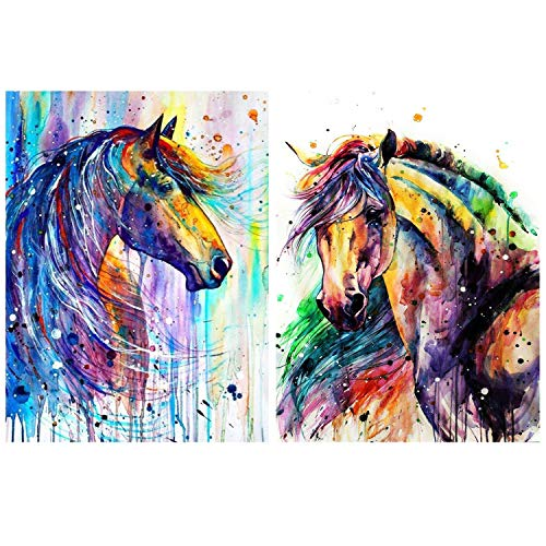 HaiMay 2 Pack DIY 5D Diamond Painting Kits Full Drill Rhinestone Painting Horse Diamond Pictures for Wall Decoration,Colorful Style (Canvas 12×16 Inch)
