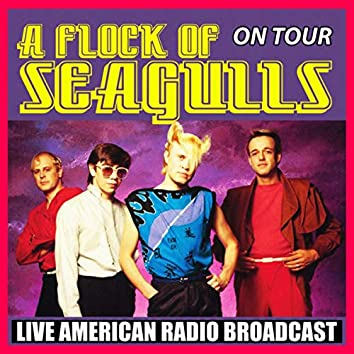 A Flock of Seagulls on Tour (Live)