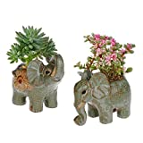 Type: Ceramic Pots Ornaments .Material: Ceramic Color as shown.Price for 2 elephant. Size: one is 4.7*2.75*4.6inch(L*W*H),The other one is 4.7*2.75*4inch(L*W*H) ::Plant not included.:: This novelty flower pot was completely made by hand. It is handic...