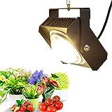 LED Pflanzenlampe 100W COB LED Pflanzenlicht Sonnenähnliche Vollspektrum Pflanzenleuchte für Zimmerpflanzen, Garten Gewächshaus Hydroponik Mit großem Kühlkörper&BlackSun Kühllack