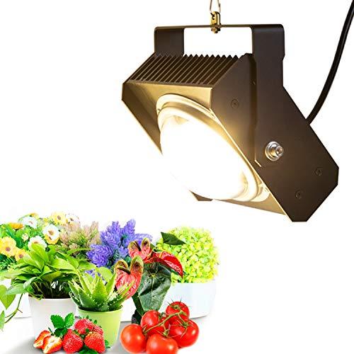 LED Pflanzenlampe COB LED Pflanzenlicht 100W, CFGROW Sonnenähnliche Vollspektrum Pflanzenleuchte für Zimmerpflanzen, Garten Gewächshaus Hydroponik Mit großem Kühlkörper&BlackSun Kühllack