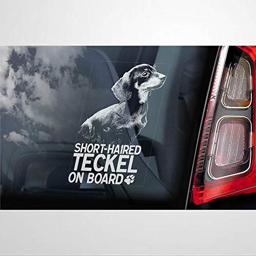 Adhesivo de pelo corto Teckel a bordo, vinilo para coche, decoración para...