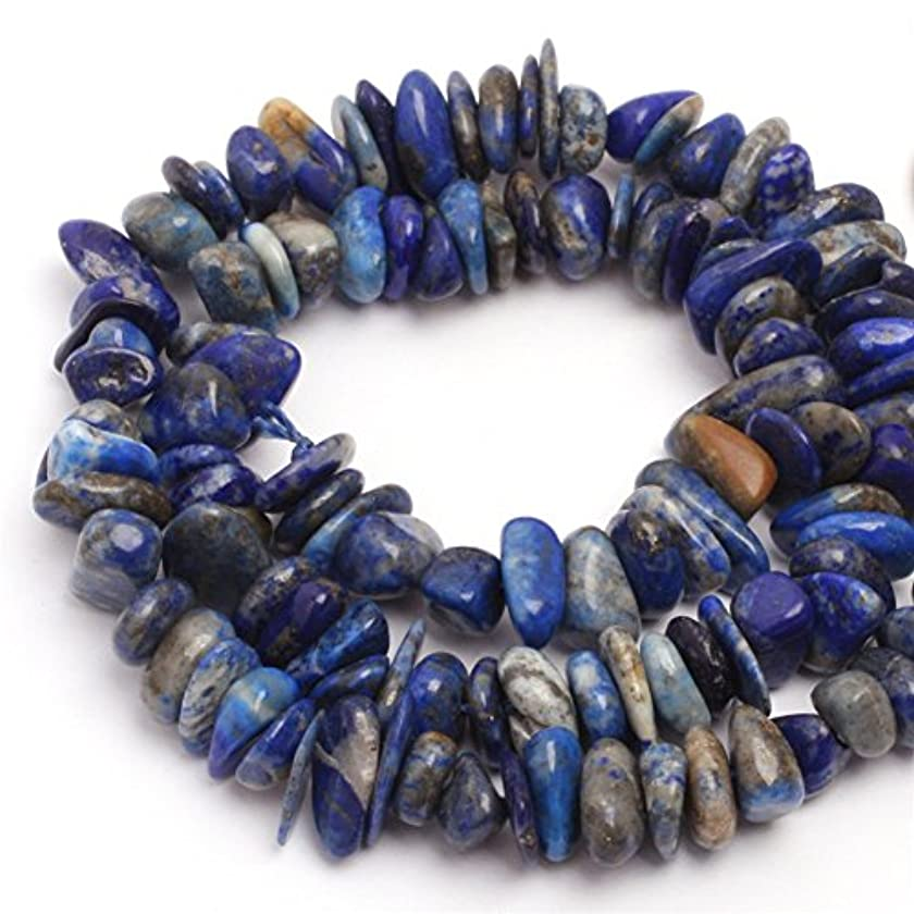 JOE FOREMAN 6x8mm Lapis Lazuli Semi Precious Gemstone Freeform Loose Beads for Jewelry Making DIY Handmade Craft Supplies 15