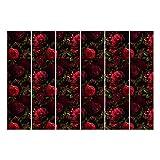 Bilderwelten cortinas deslizables set red roses in the dark 6 paneles japoneses 250 x 360cm sin montaje
