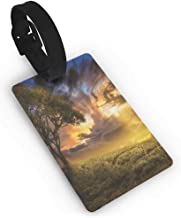 Luggage Tags with Genuine Leather Strap,Tree,Dreamy Landscape Sunset at Hill Clouds Mystery Contemplation Tranquil Wisdom,Multicolor One Size Straps Suitcase Green Yellow Blue