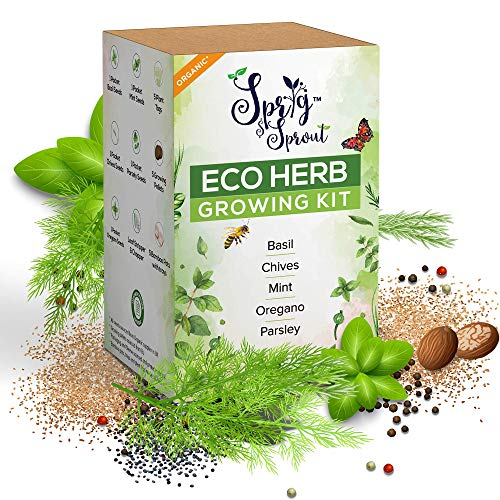 Sprig & Sprout Grow Your Own Herb Garden - 5 Herb Seeds and Grow Kit for...