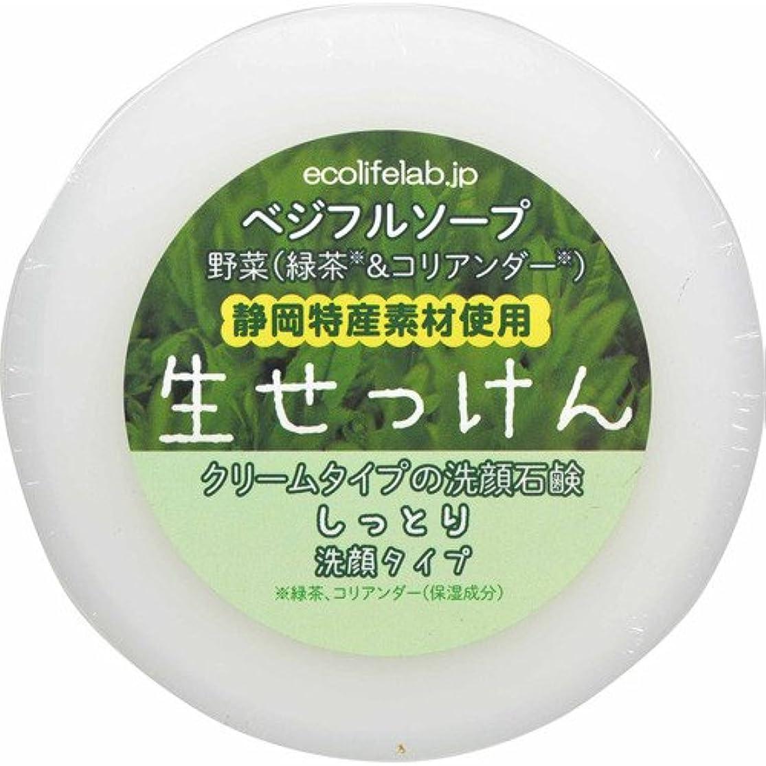 アブストラクトスープ服ベジフルソープ 生せっけん(野菜) しっとり洗顔タイプ 100g