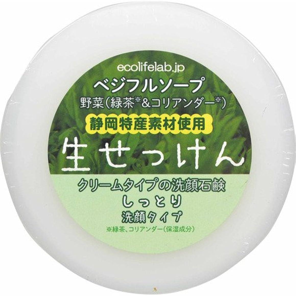 ハイランドゴム無駄だベジフルソープ 生せっけん(野菜) しっとり洗顔タイプ 100g