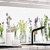 StickerProfis Küchenrückwand selbstklebend Premium KRÄUTERGLÄSER 1.5mm, Versteift, alle Untergründe, Hartschicht, 60 x 340cm