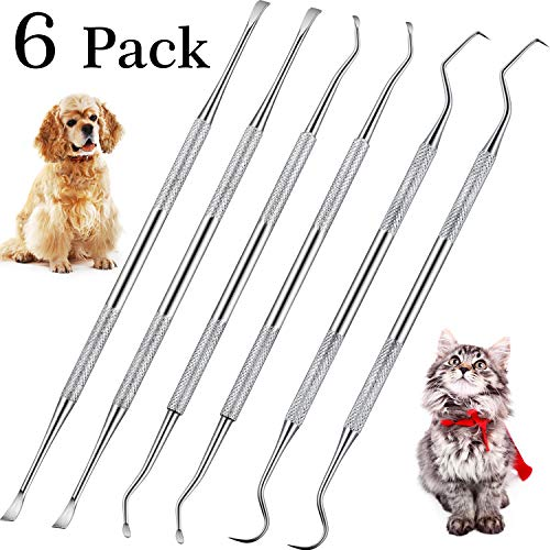 Dog Dental Tooth Scaler and Scraper Stainless Double Headed Tarter Remover Scraper Pet Teeth Cleaning Tools for Dog and Cat (6)