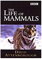 The Life of Mammals [DVD]