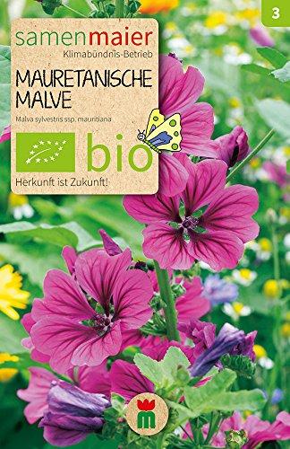 Samen Maier 882 Mauretanische Malve (Bio-Malvensamen)