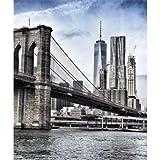 Estor Digital Ciudades New York 101 ┬АESTORES ENROLLABLES TRANSLUCIDO O Screen! (90X170,...
