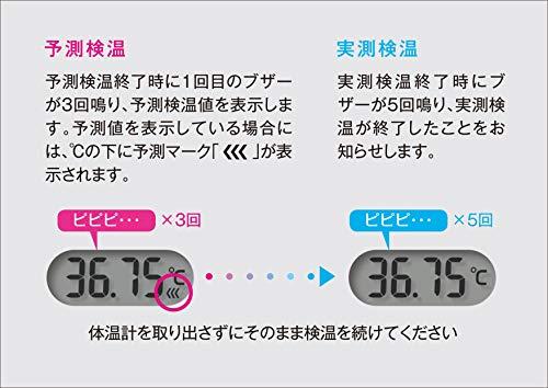 シチズン電子体温計CTEB503L婦人用30秒バックライト付きCTEB503Lホワイト